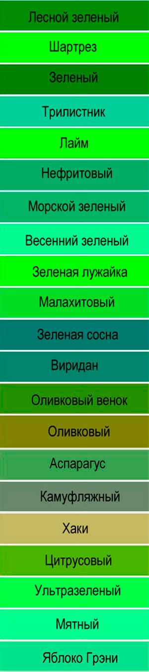 Всё оттенки зеленого цвета